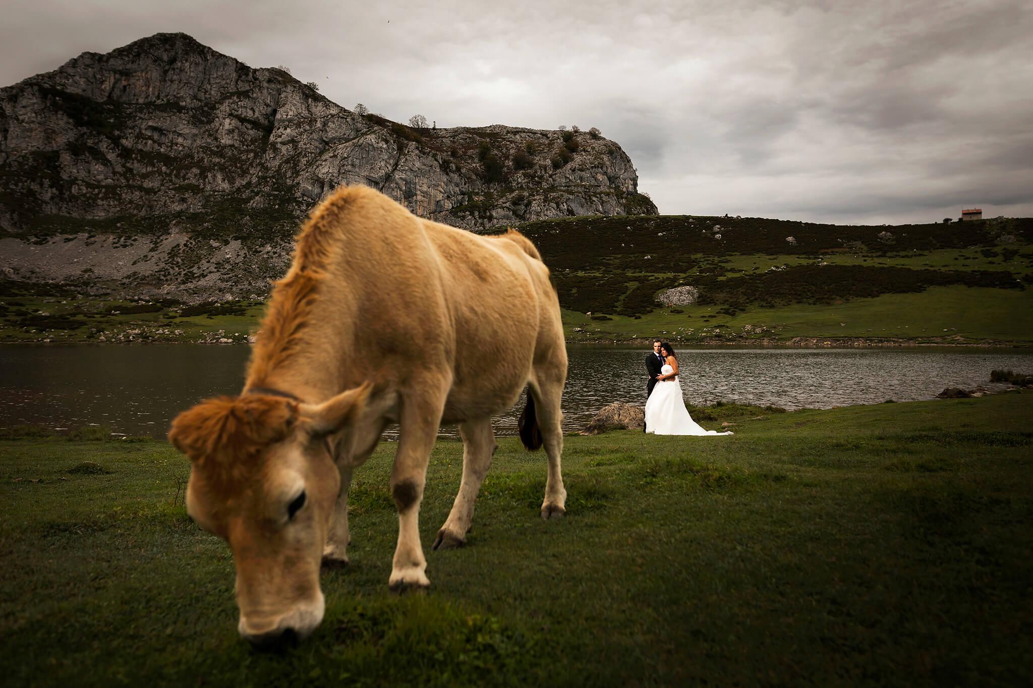 High Mountain Wedding